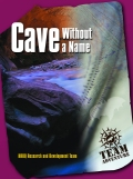 Cave without a name teamwork game