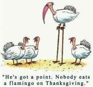 Turkey Day 2